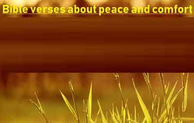 Bible verses about peace and comfort