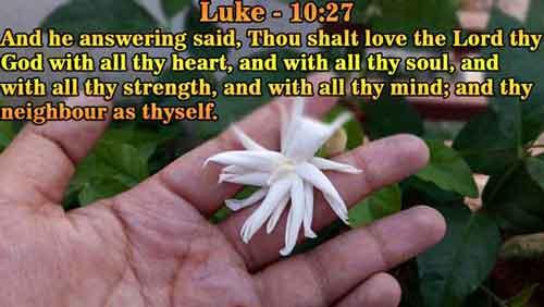 Luke 10 kjv