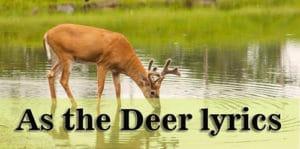 As the Deer lyrics - Songwriters: Martin J. Nystrom (chords)