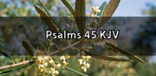 psalms 45 kjv