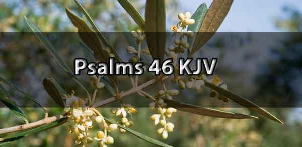 psalm 46 kjv