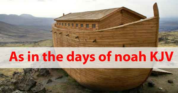 As in the days of noah KJV