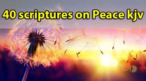 40 scriptures on Peace kjv