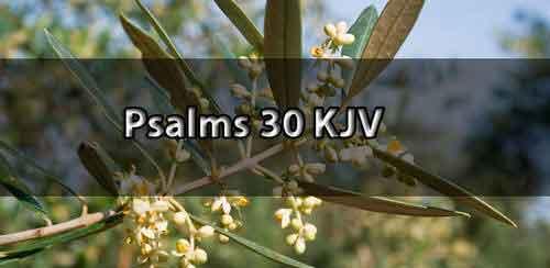 psalm-30-kjv