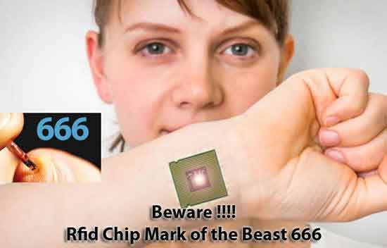 micro chip 666