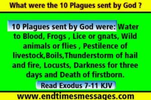 What were the 10 Plagues sent by God ?