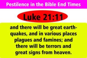 pestilence in the bible end times