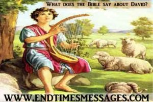 what does bible say about david