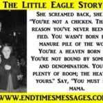 The Little Eagle Story