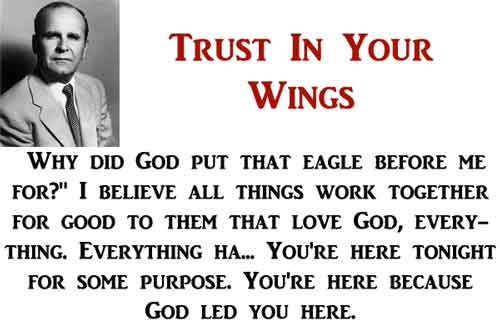 Trust In Your Wings